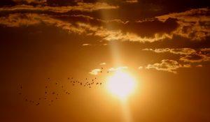 שמש בשמיים
